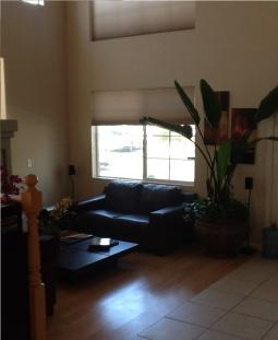 Living Room Window correction