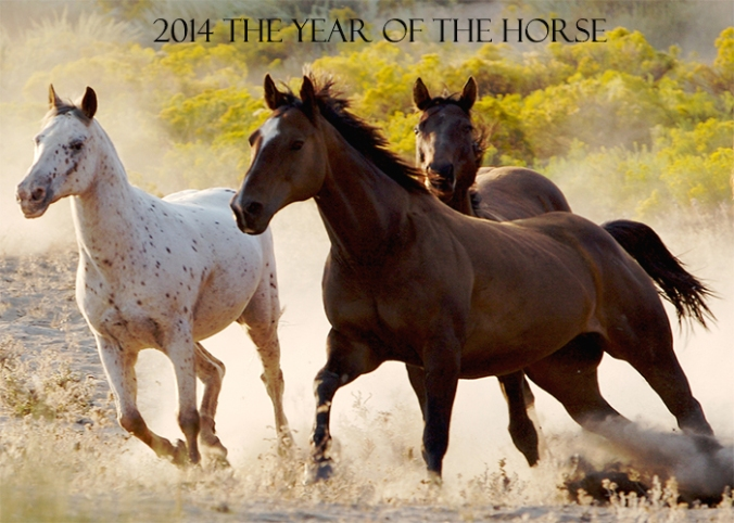 yr of horseii